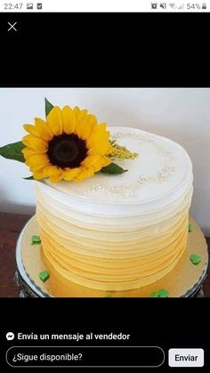 Tutu, Cakes, Desserts, Food, Messages, Ballet Skirt, Meal, Deserts, Essen