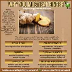 ☛ Do YOU use Ginger?  It is one of nature's most potent root.  FOR A PAIN RELIEVER AND PMS RELIEVER SMOOTHIE USING GINGER:  http://www.stepintomygreenworld.com/helathyliving/pms-reliever-smoothie/  ✒ Share | Like | Re-Pin | Comment