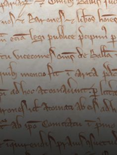 Magna Carta Interactive Exploration