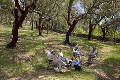 outdoor lunch Spain