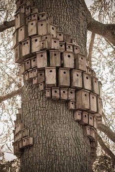 I love bird houses!