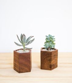 Its geometric form featuring beautiful, deeply grained Mugavu wood makes this planter a stunning addition to a shelf or tabletop. Designed with a focus on simpl