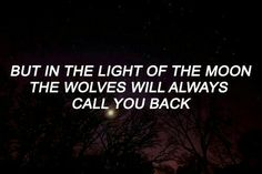 Arein // The Wolves of Manen