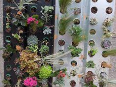 Zonas verdes en La Defènse de París ~ Botànic Serrat