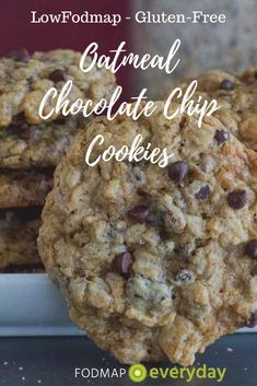 Is it an oatmeal cookie? Or chocolate chip? I can't decide! I do know this: our One Bowl Oatmeal Chocolate Chip Cookies are super easy to make and please lovers of both kinds of cookies. Zucchini Chocolate Chip Cookies, Healthy Oatmeal Cookies, Gluten Free Oatmeal, Chocolate Chip Oatmeal, Fodmap Dessert Recipe, Fodmap Recipes, Cookie Recipes, Dessert Recipes, Desserts