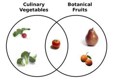 Fruit vs. vegetable Venn diagram.