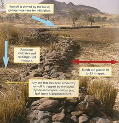 """Climate Change Adaptation technology: Stone lines or ('bunds') slow down runoff, incerease water infiltration & for the basis for improved production in semi-arid areas. [S]ediment is [also] captured behind these semi-permeable barriers. Stone lines were originally a traditional technique in the Sahel, but have been improved by careful construction, & through aligning on the contour."
