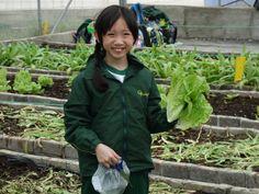 同學們每人親手採摘有機蔬菜帶回家!