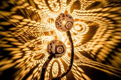 Serpentine Lamps Drilled from Coconut Shells Cast Dazzling Patterns of Light