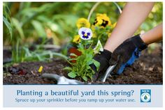 IT'S SPRINKLER SPRUCE-UP WEEKEND!  During the first weekend in May, WaterSense and its partners are encouraging homeowners to give their lawn irrigation systems a water-saving wake-up call, as part of its second annual Sprinkler Spruce-Up.  - VAISEY IRRIGATION, INC.