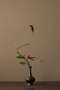 Ikebana by Toshiro Kawase, Japan Ikebana Arrangements, Ikebana Flower Arrangement, Beautiful Flower Arrangements, Floral Arrangements, Beautiful Flowers, Arte Floral, Deco Floral, Bonsai, Wabi Sabi