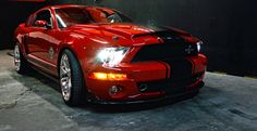 A site about USA Classic American Muscle Cars, hot-rod culture and lifestyle. 2009 Ford Mustang, Ford Mustang Fastback, Mustang Boss, Shelby Gt500, Ford Mustangs, Super Snake, Carroll Shelby, Latest Cars, Ford Motor Company