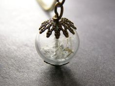 Cute!!  Etsy listing at http://www.etsy.com/listing/97317089/real-dandelion-necklace-hand-blown-glass