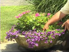 How to Plant a Container Garden - YouTube