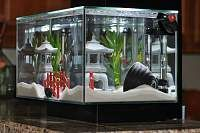 1000 images about great aquarium decor on pinterest for Asian fish tank decorations