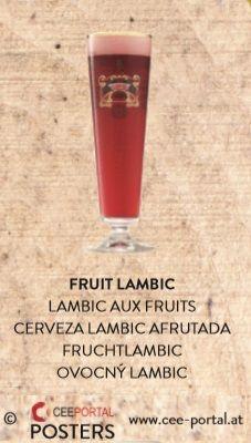 FRUIT LAMBIC LAMBIC AUX FRUITS CERVEZA LAMBIC AFRUTADA FRUCHTLAMBIC OVOCNÝ LAMBIC Shot Glass, Beer, Fruit, Tableware, Foods, Root Beer, Ale, Dinnerware, Tablewares
