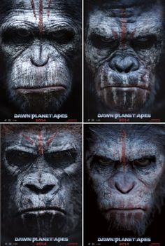"R for Reeves Matt and ""Dawn of the Planet of the Apes"""
