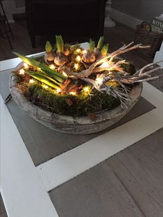 Kerst sterretjes verlichtin - Lilly is Love Christmas Decorations, Table Decorations, After Christmas, Planting Bulbs, Garden Planters, Ikebana, Indoor Plants, Tablescapes, Floral Arrangements