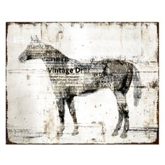 horse canvas art down to earth style new canvas art