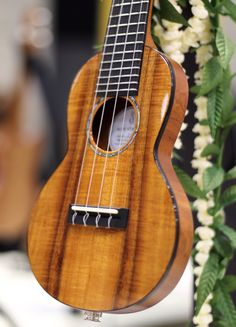 BLUE STRINGS Model SU414 #ukulele