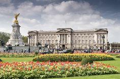Buckingham Palace                                                                                                                                                                                 More