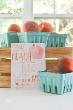 A Southern Peach Party for Isla's Birthday — Momma Society - Sweet as a Peach Party Theme 1st Birthday Party For Girls, Kids Birthday Themes, Birthday Bash, Summer Birthday, Princess Birthday, Peach Baby Shower, Peach Party, 1st Birthdays, Southern