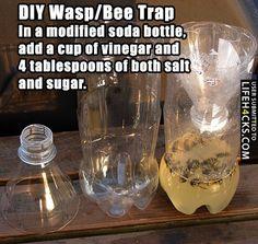 DIY: Wasp/Bee Trap - #DIY, #LifeHack