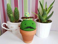 Mon cactus mexicain : Projet DIY
