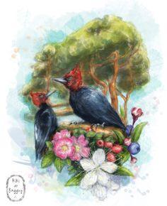 Patagonia: Flora & Fauna by Kiki Baggins Art Flora And Fauna, Drawing, Patagonia, Illustration, Painting, Album, Design, Portraits, Art