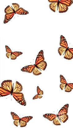 Iphone Wallpaper Vsco, Butterfly Wallpaper Iphone, Homescreen Wallpaper, Iphone Background Wallpaper, Iphone Wallpapers, Wallpaper Quotes, Emoji Wallpaper, Striped Wallpaper, Iphone Backgrounds