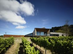 Casa 'Main Ridge' Arquiteto: McAllister Alcock Architects Fotógrafo: Derek Swalwell Fonte: Archdaily