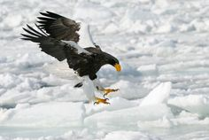Almost There by Harry  Eggens on 500px