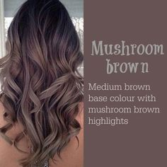 Medium Brown With Gray Highlights