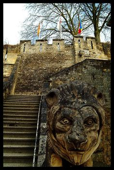 Valkenburg's Castle, Valkenburg, Netherlands. I was there for their underground Christmas Market and this is an awesome place!