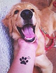 tatuajes con significado de vida y muerte Tiny Wrist Tattoos, Dog Tattoos, Animal Tattoos, Dog Memorial Tattoos, Animal Print Fashion, Different Tattoos, Animal Activities, Animal Photography, Cute Animals