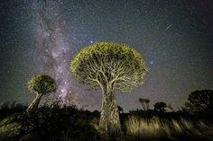 めまいがするほど美しい夜空の写真たち17選 WIRED.jp