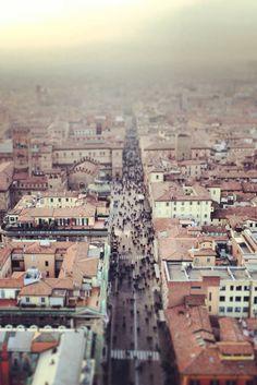 .Bologna