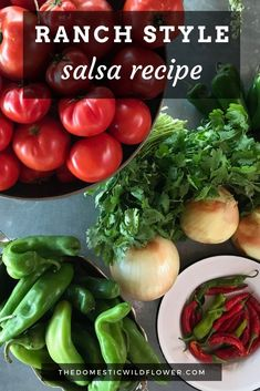 This ranch style salsa recipe is perfect for brand new beginners because it cooks up quickly, is giftable, is delicious, and is relatively fast. Read on for the recipe! Canning Homemade Salsa, Salsa Canning Recipes, Easy Canning, Canning Salsa, Salsa Recipe, Salsa For Beginners, Recipes For Beginners, Canning Vegetables, Canning Tomatoes