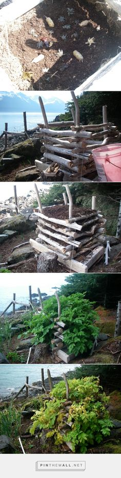 The Zeiger Family Homestead Blog » potato tower - created via http://pinthemall.net yep. I want this potato tower. I think I could find the right bits of wood around the property!