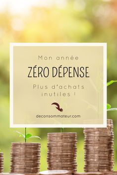 Finance tips, saving money, budgeting planner - Finance savings ideas and tips Budgeting Process, Budgeting Finances, Budgeting Tips, Plan Budgétaire, How To Plan, Zero Waste Home, Faire Son Budget, Budget Envelopes, Envelope Budget
