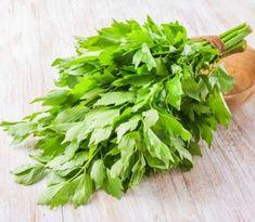 Liečivý ligurček – 10 prínosov pre zdravie   Božské nápady Natural Health Remedies, Celery, Pesto, Herbs, Vegetables, Healthy, Parsley, Pharmacy, Plant