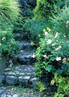 garden steps The Gardens of Russel Page 2 Garden Paths, Garden Landscaping, Landscaping Ideas, Nature Sauvage, Beautiful Stairs, Garden Stairs, Italian Garden, All Nature, Enchanted Garden
