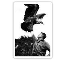 King of vultures Sticker