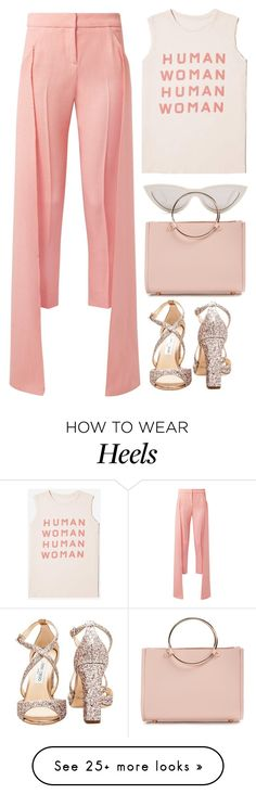 """Untitled #2802"" by seventeene on Polyvore featuring Everlane, Hellessy, CÉLINE, Jimmy Choo, Future Glory Co., festivalstyle, Packandgo and SXSW"