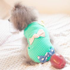 Pet Supplies Bow Cute Vest Princess Soft Green Lovely Clothes for Little Pets Dogs Blue Frog (S)-Intl | Lazada Singapore