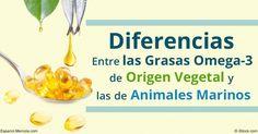 Las fuentes vegetales de omega-3 no proporcionan los mismos beneficios que las fuentes de animales marinos. Descubra las diferencias. http://articulos.mercola.com/sitios/articulos/archivo/2016/09/11/diferencia-entre-omega-3-de-plantas-y-animales.aspx