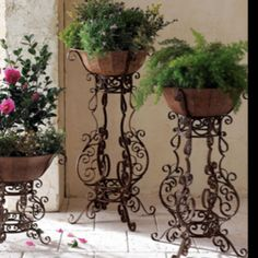 Spiffy plant stands