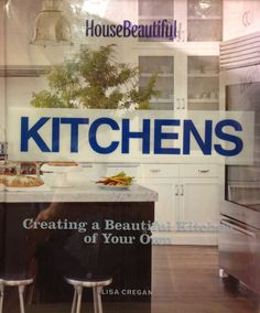 Kitchens - wire front cabinet