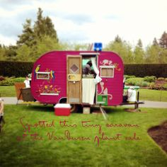 Hot pink camper with birds, how fun - this is greaqt inspiration for our sweetie caravan...