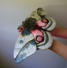Moth and Butterfly Fibre Sculptures Yumi Okita on Etsy Beautiful Bugs, Beautiful Butterflies, Design Textile, Textile Art, Art Papillon, Insect Art, Bugs And Insects, Chenille, Butterfly Art